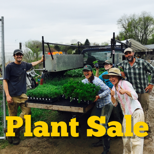 Farm Fest and Plant Sale — Poughkeepsie Farm Project