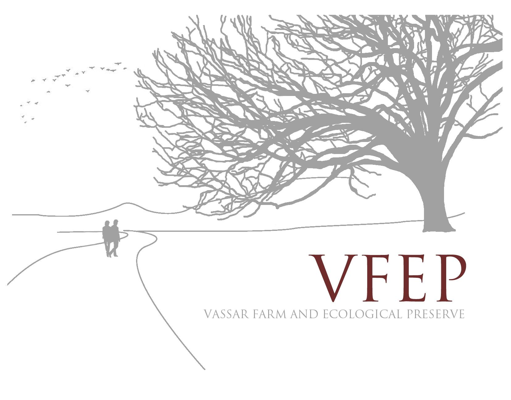 VFEP Logo Final.jpg