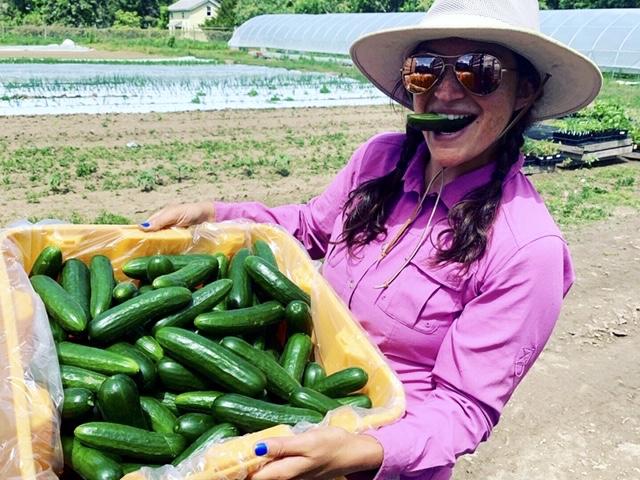 Lauren cucumbers.jpg