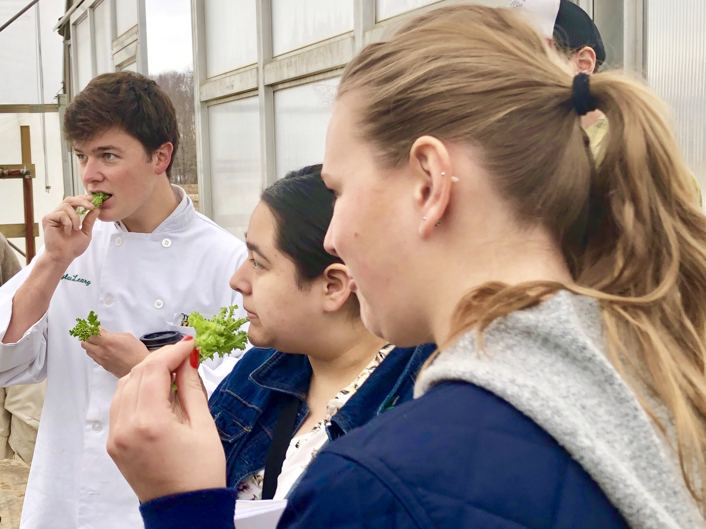Students and Spinach at PFP.jpg