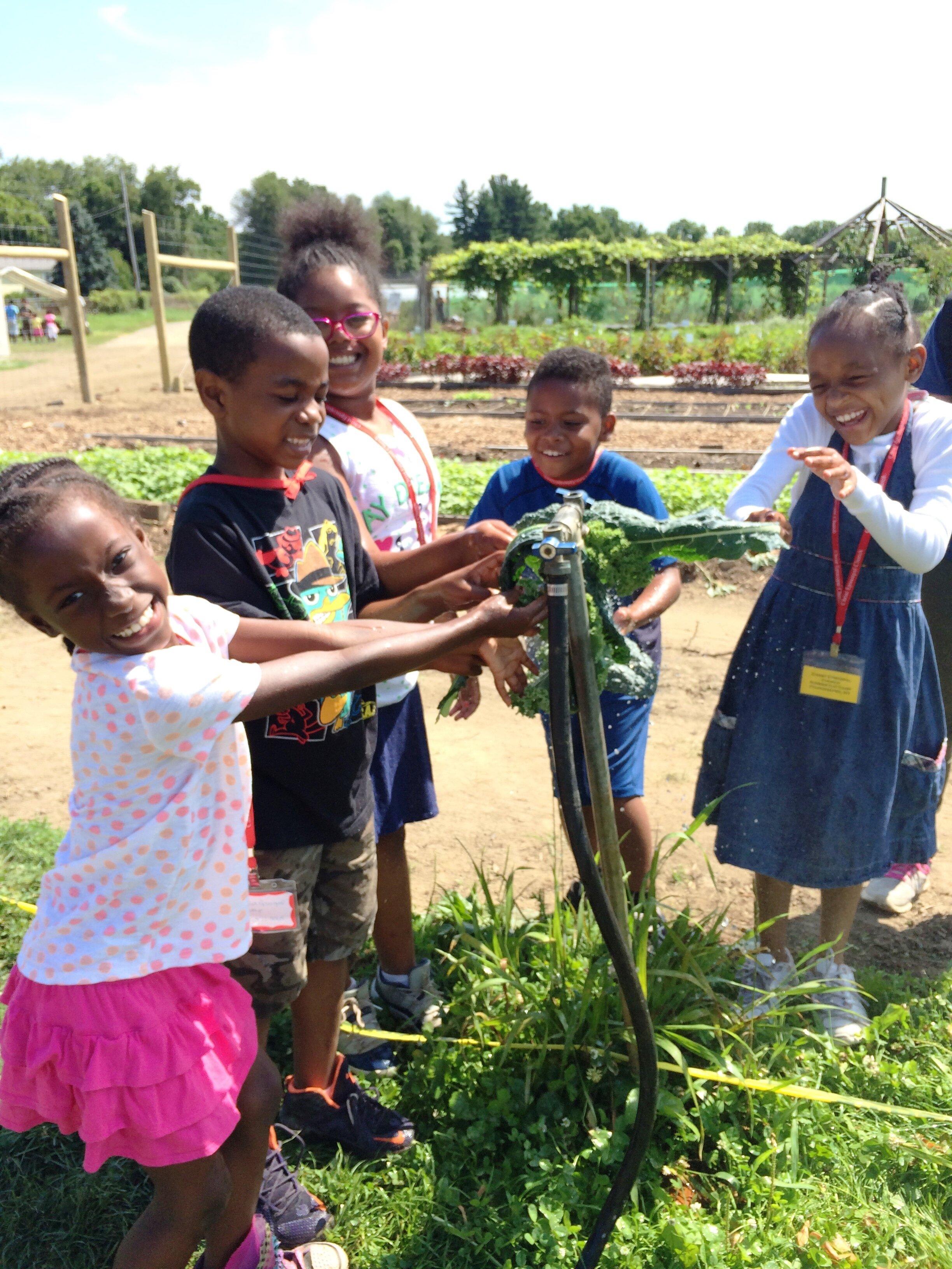 Kids Washing Kale