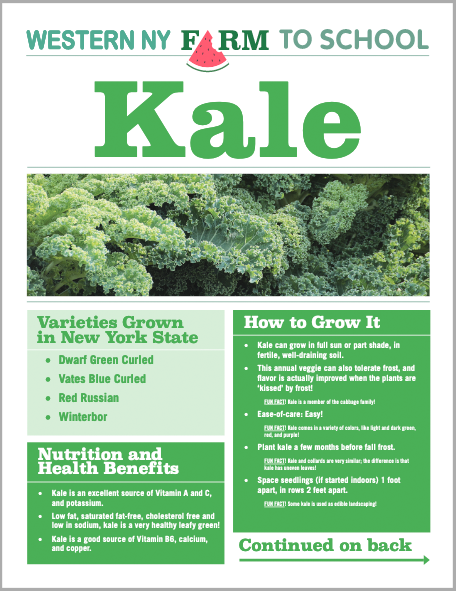 Kale Newsletter from Western NY Farm to School - Our friends in Western NY created this great newsletter with info on how to grow kale, how to prepare it, and more kid-friendly ideas and recipes!