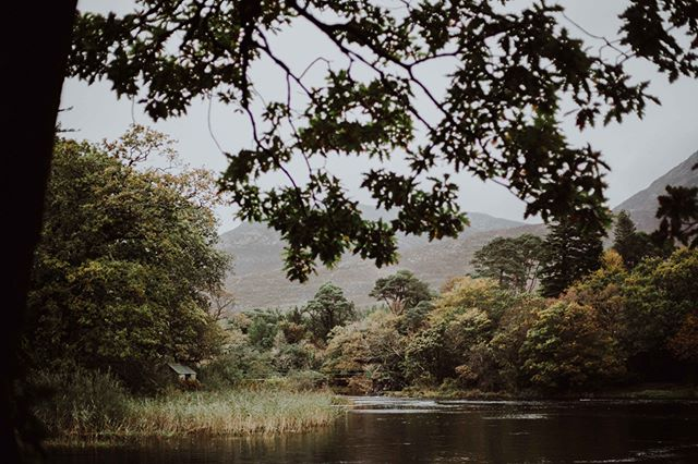 Some idyllic location (sigh). This is one of the places I love most in the world and you will often find me sculking there with a camera. . . . . . . . .#vscogang #vscotravel #landscape #irishcountryliving #kinfolk #52grams #photographymood #photofever #liveauthentic #livefolk #click_vision #folkmagazine #art_pure #nature #ireland #littlebitofnature #ig_4ever1 #global_ladies #rsa_sky #jj_forum #transfer_visions #igers #ig_shutterbugs #weddingphotographer