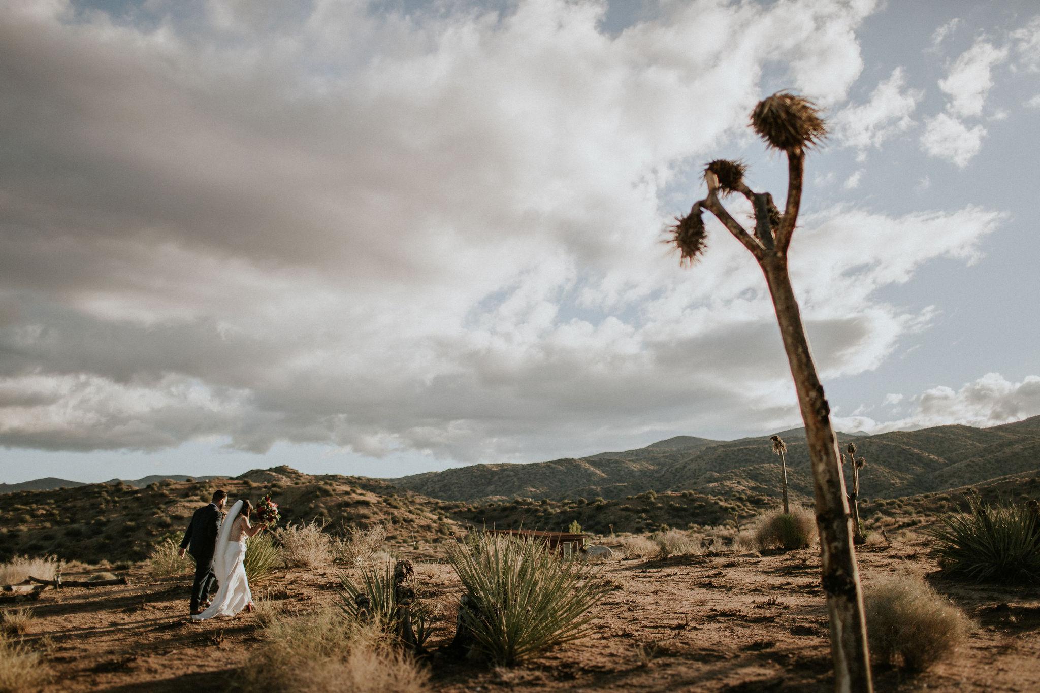 RimrockRanch-JoshuaTree-Wedding-Jami-Laree-605.jpg