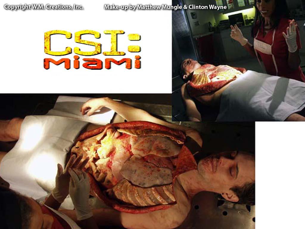 csim30.jpg