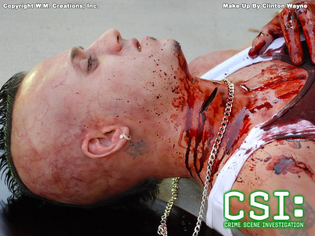 csimbcn01.jpg