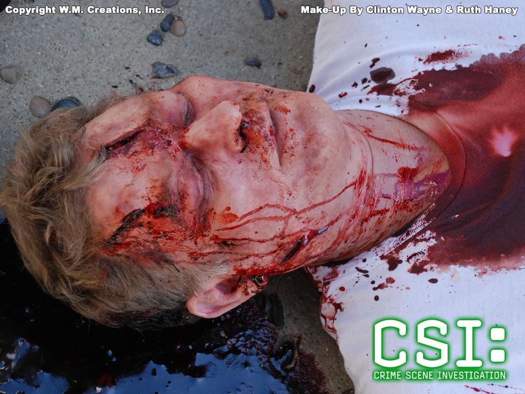 csird01.jpg