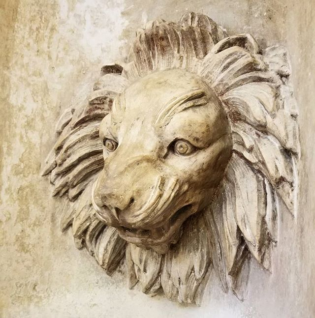 #details #rawr #lion #stone #watertower #chicago