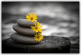 mindfulmess meditation.jpg