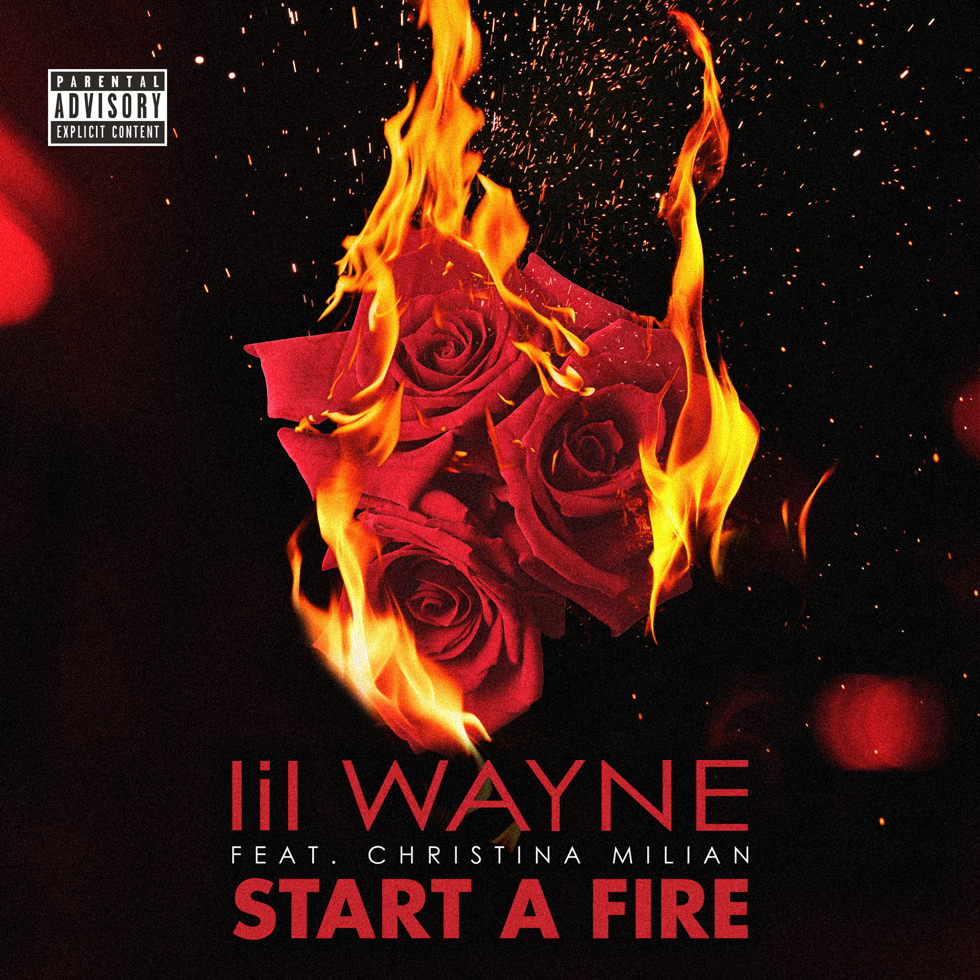 "UNUSED cover artwork for Lil Wayne's 2014 single ""Start a Fire""."