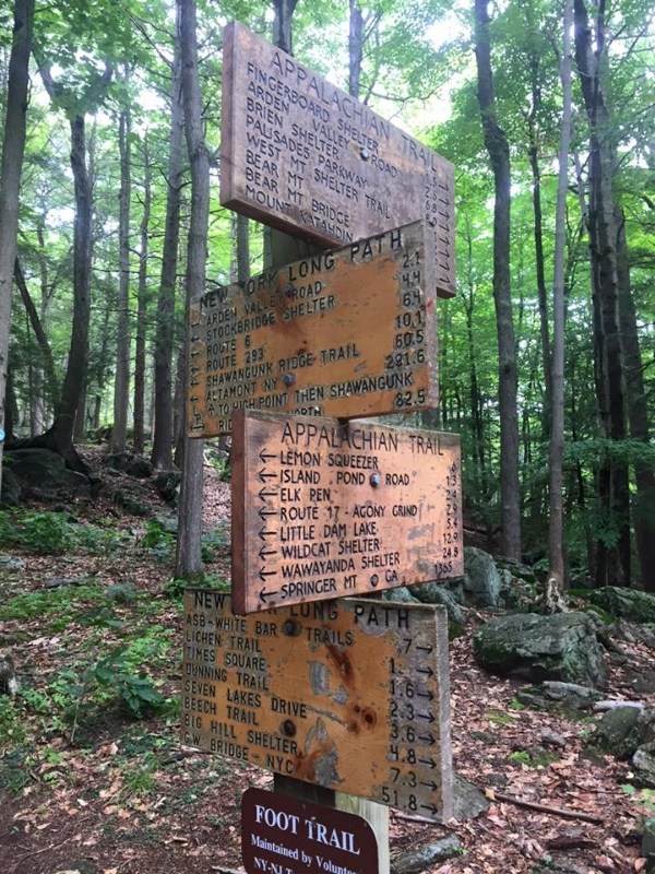 Intersection of the Appalachian Trail and the New York Long Trail