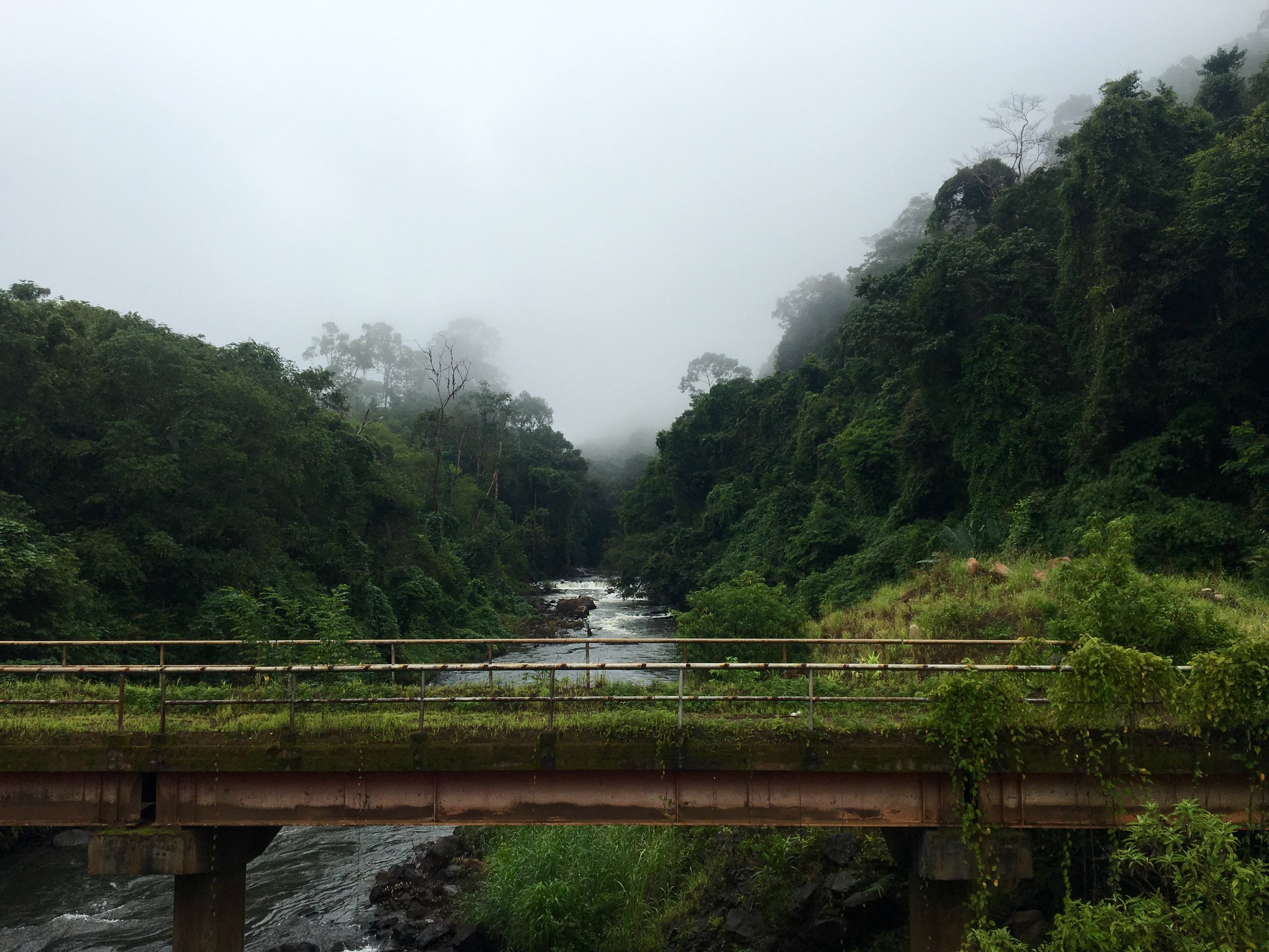 Crossing a bridge on a foggy day on the Bolaven Plateau