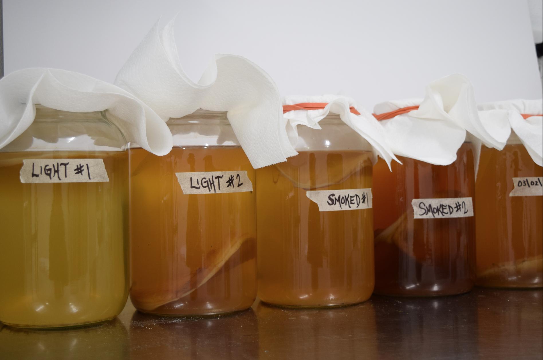 Harvest Roots first Inari Tea sensory experiments. Photo: Pete Halupka