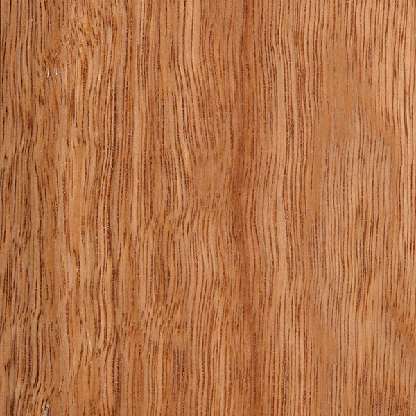 Spotted Gum, click for a detailed product data sheet