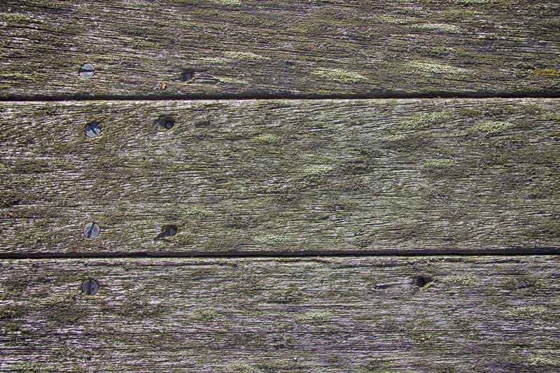deck boards with mould and moss
