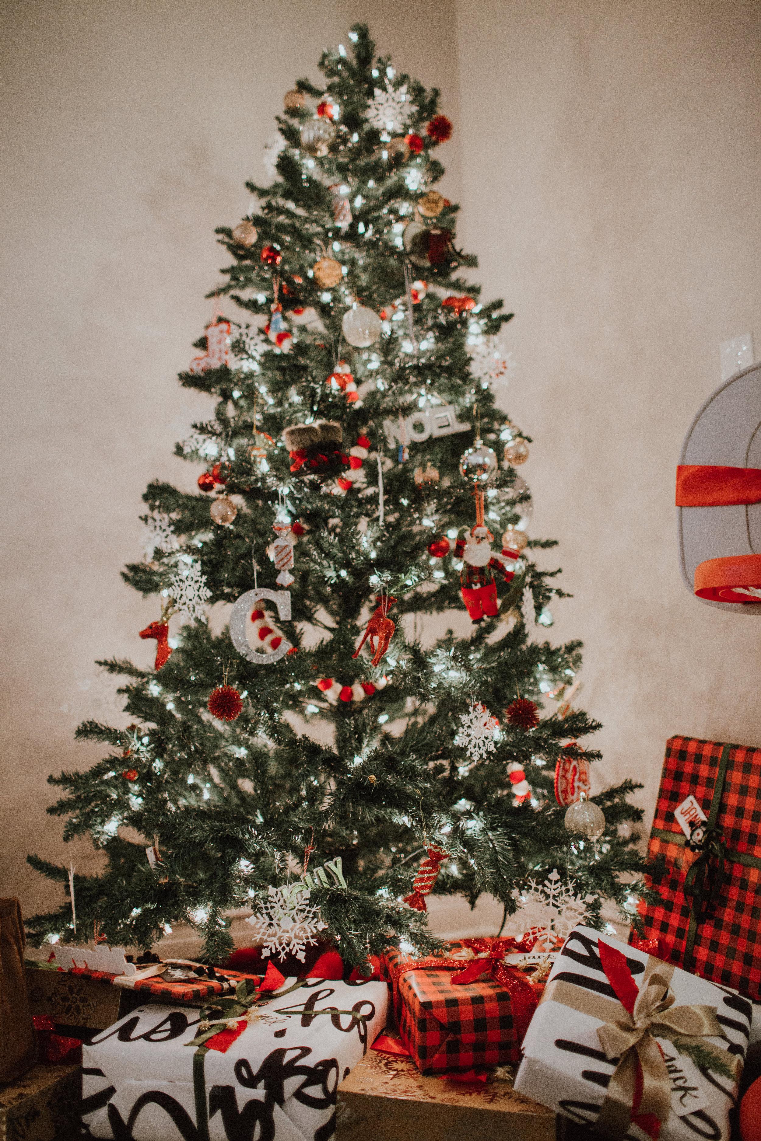 Christmas2017-23.jpg