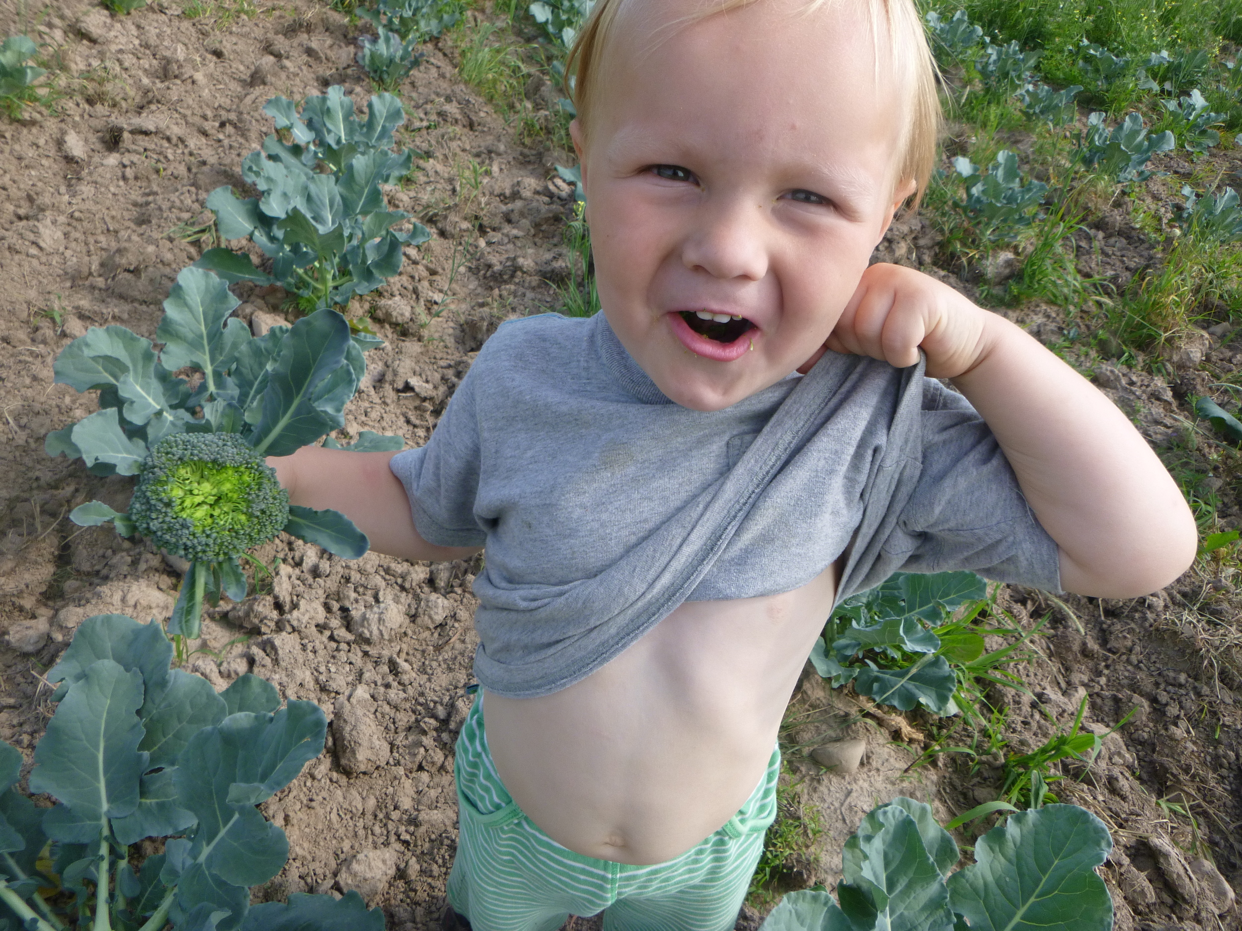 Broccoli goes in Otto's belly!