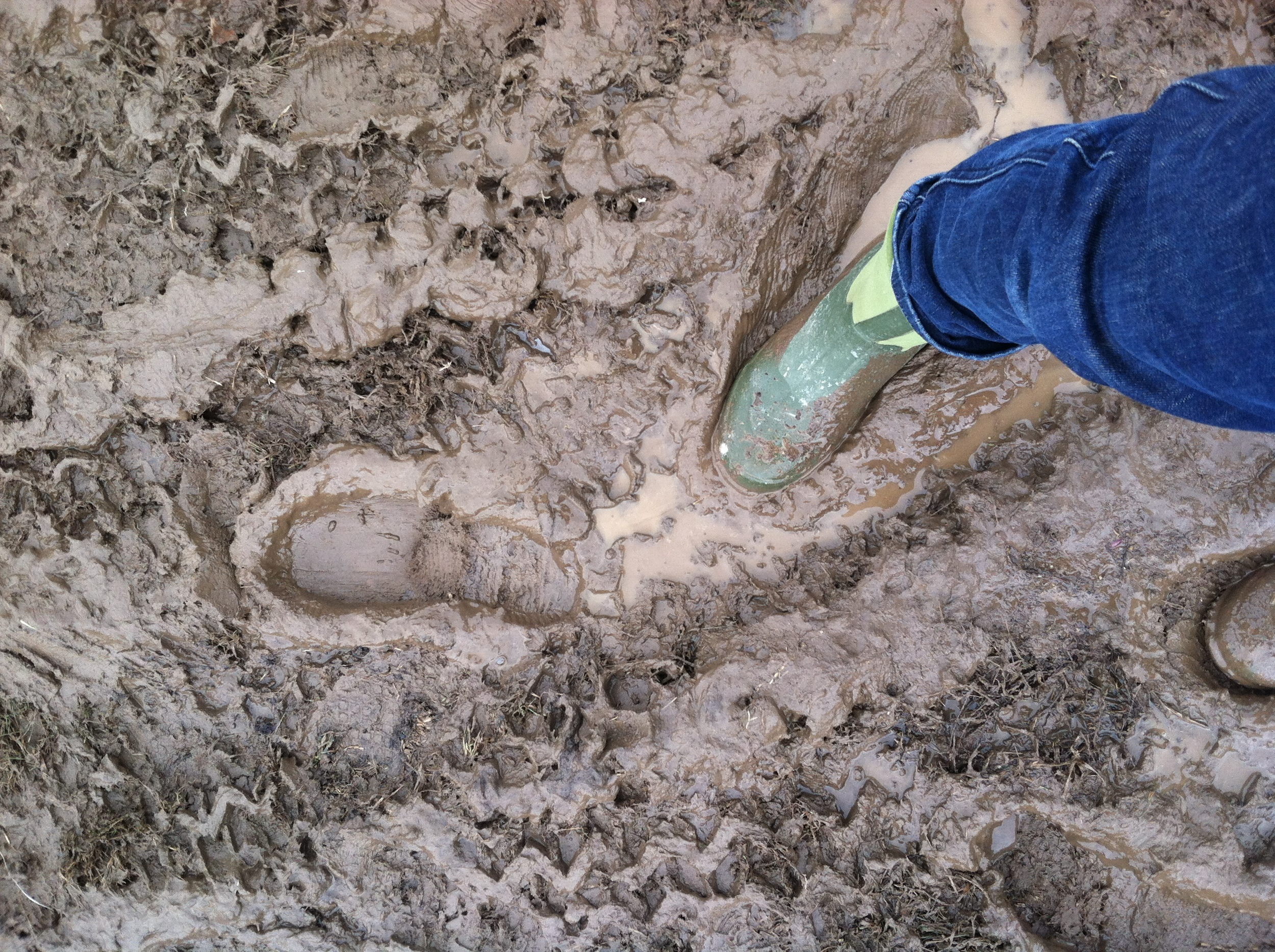 mud season in full effect