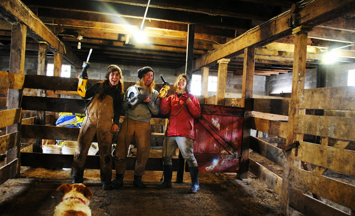 Miranda, Haley, and Dana working on the barn when it was too wet to be in the field.