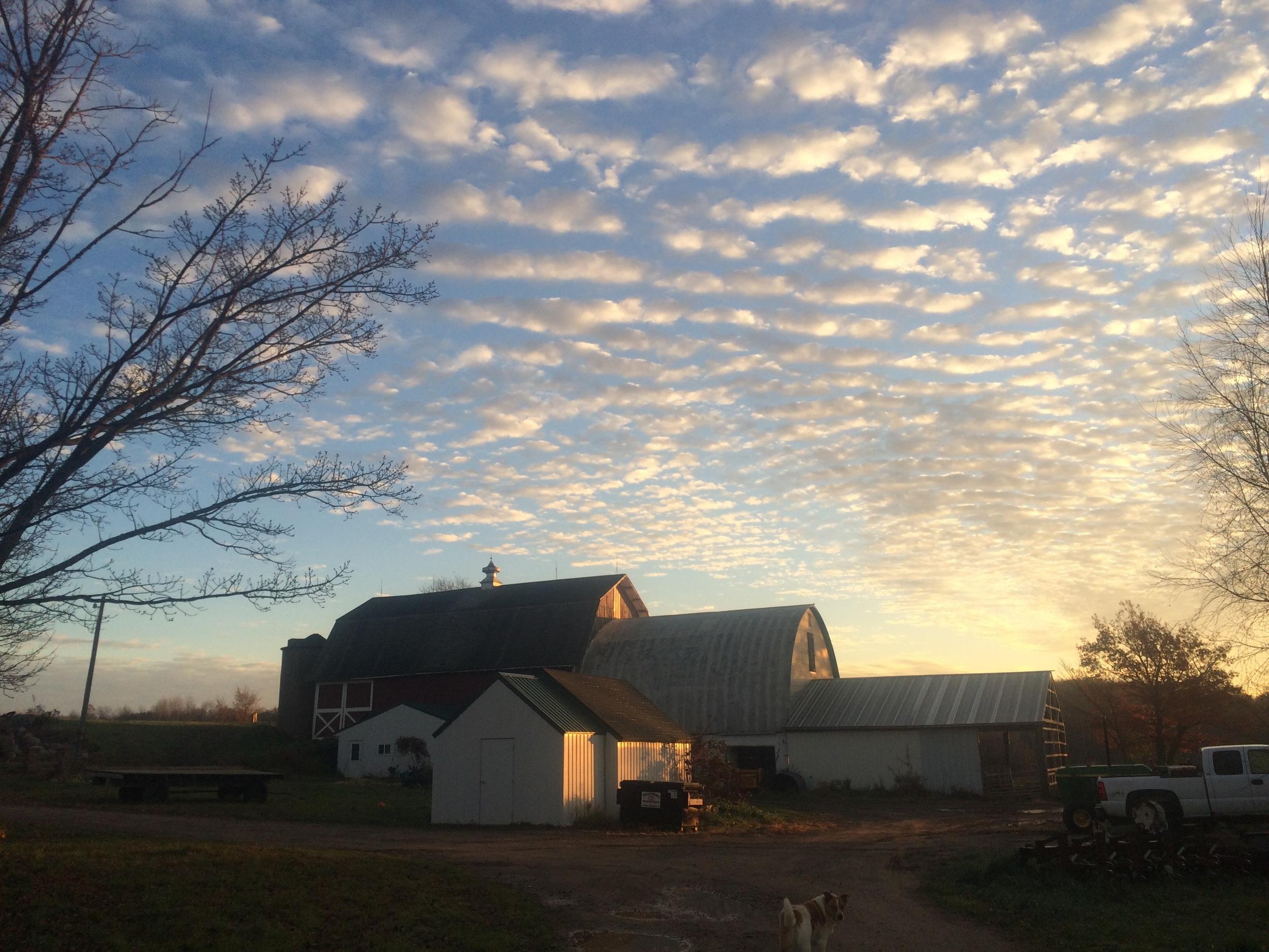 Beautiful sunrise on the farm.