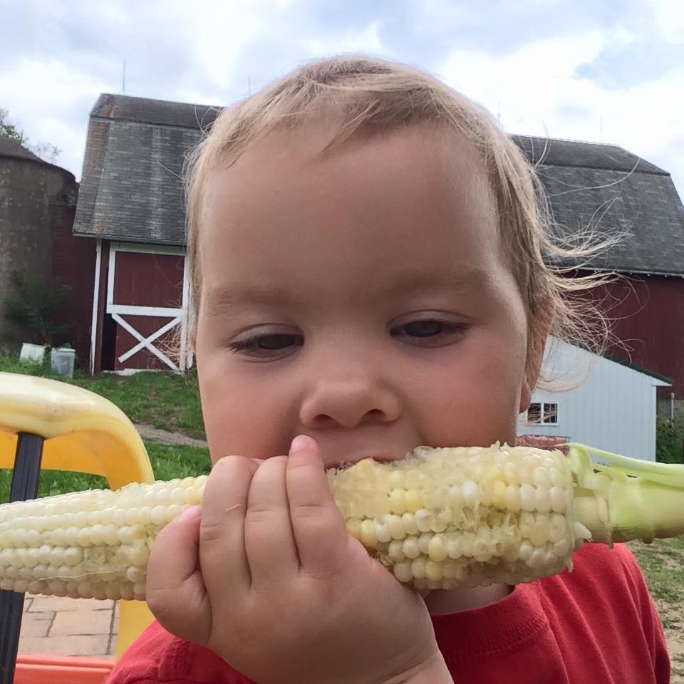 Sadie's enjoying the first sweet corn of the season.
