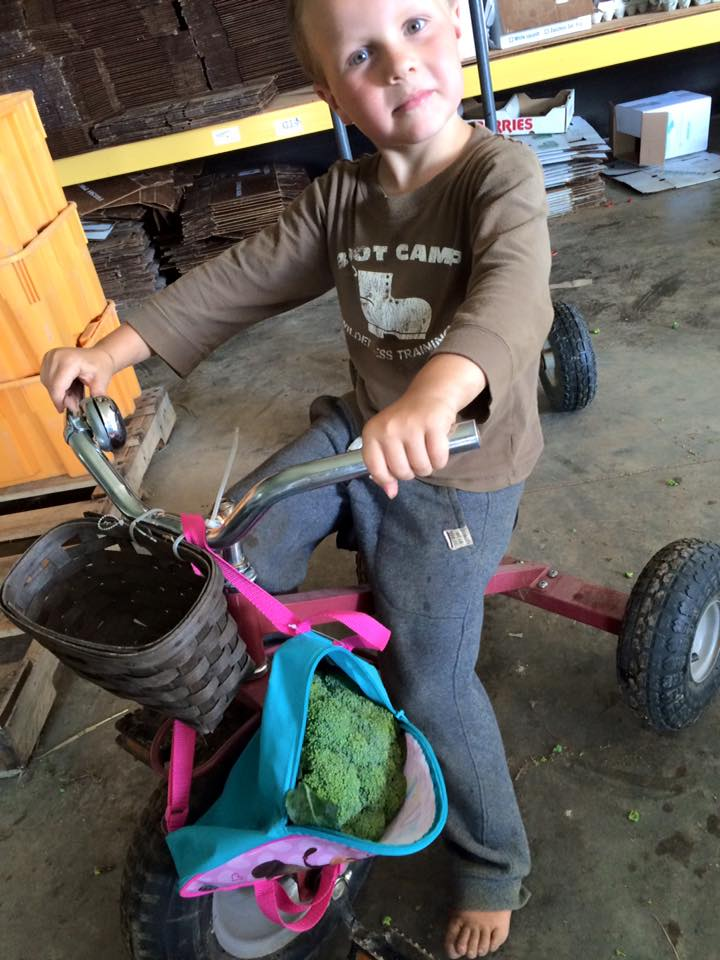 Backpack full of broccoli. Getting ready for school?
