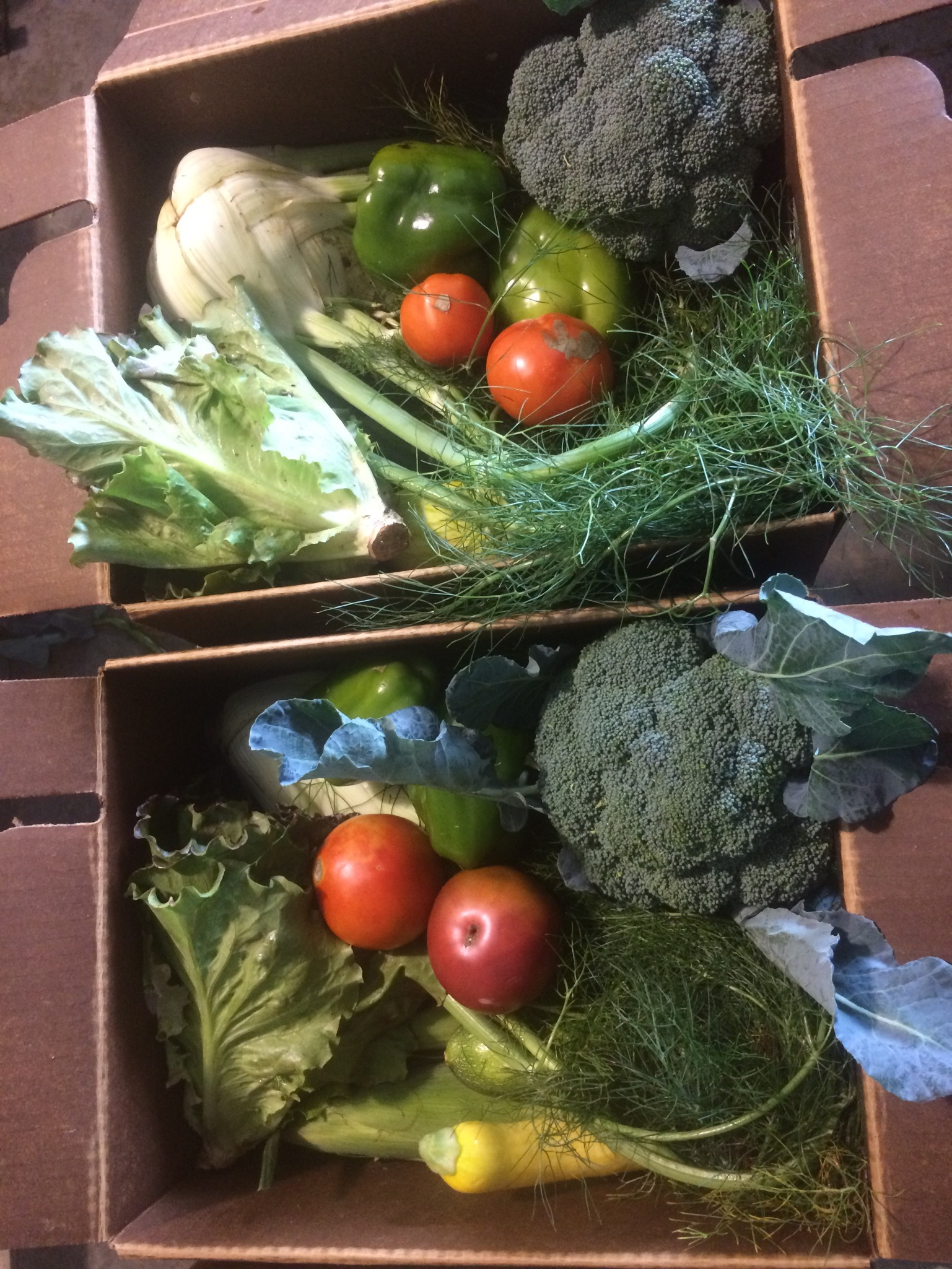 a beautiful box of veggies