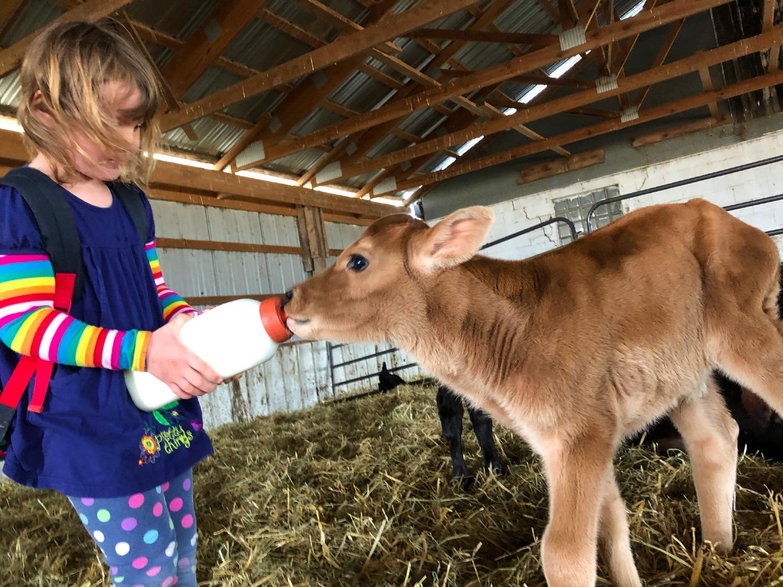 Best farm chore!
