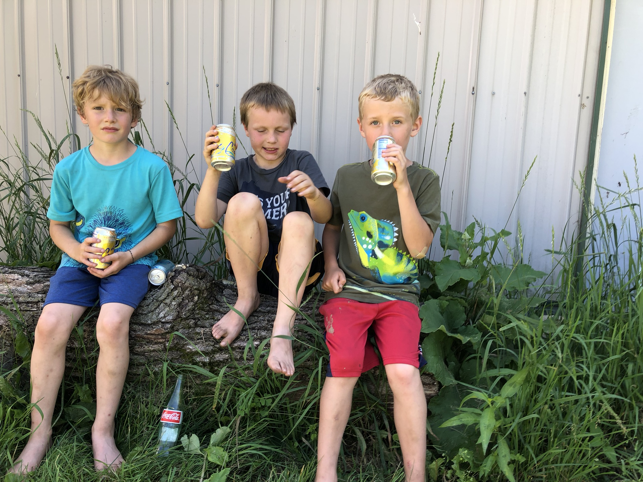 LaCroix Boys keeping cool on the farm tour