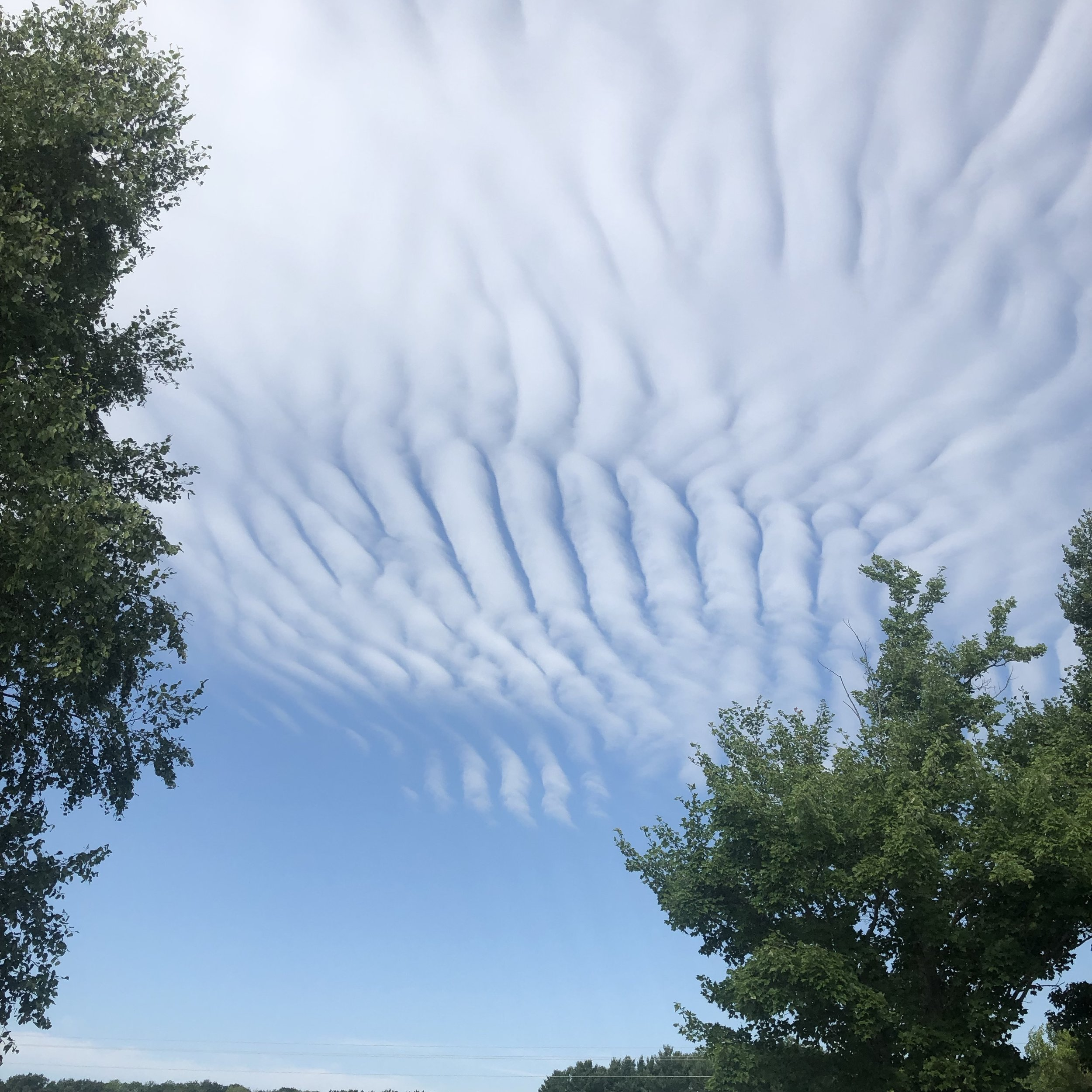 rows of clouds