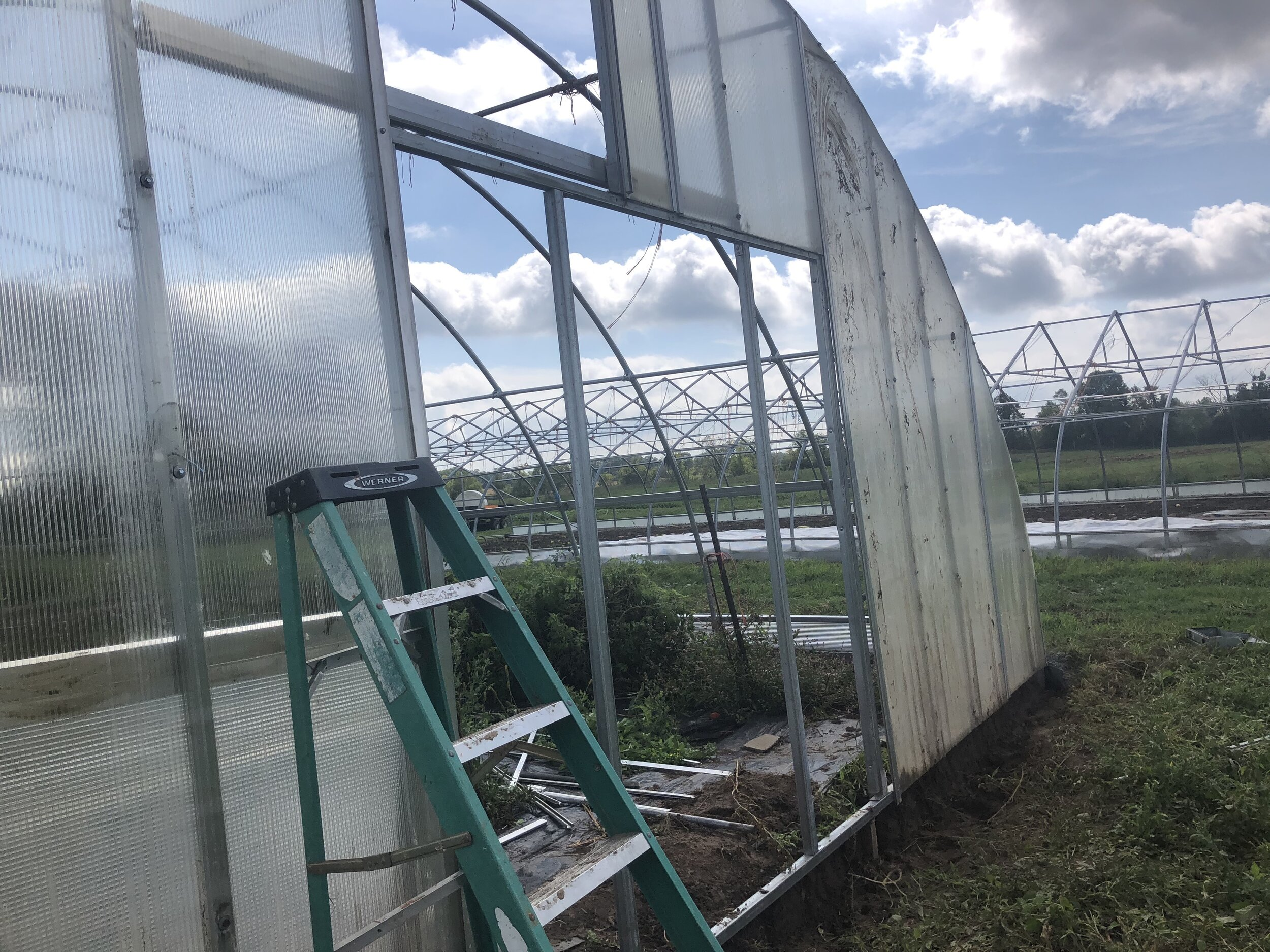 Hoophouse upgrades. Getting back to this project to get it finished up soon!  It will help us extend our tomato season and have more favorites in our early season and late season boxes.