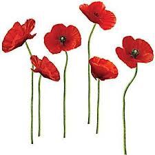 ANZAC poppies.jpg