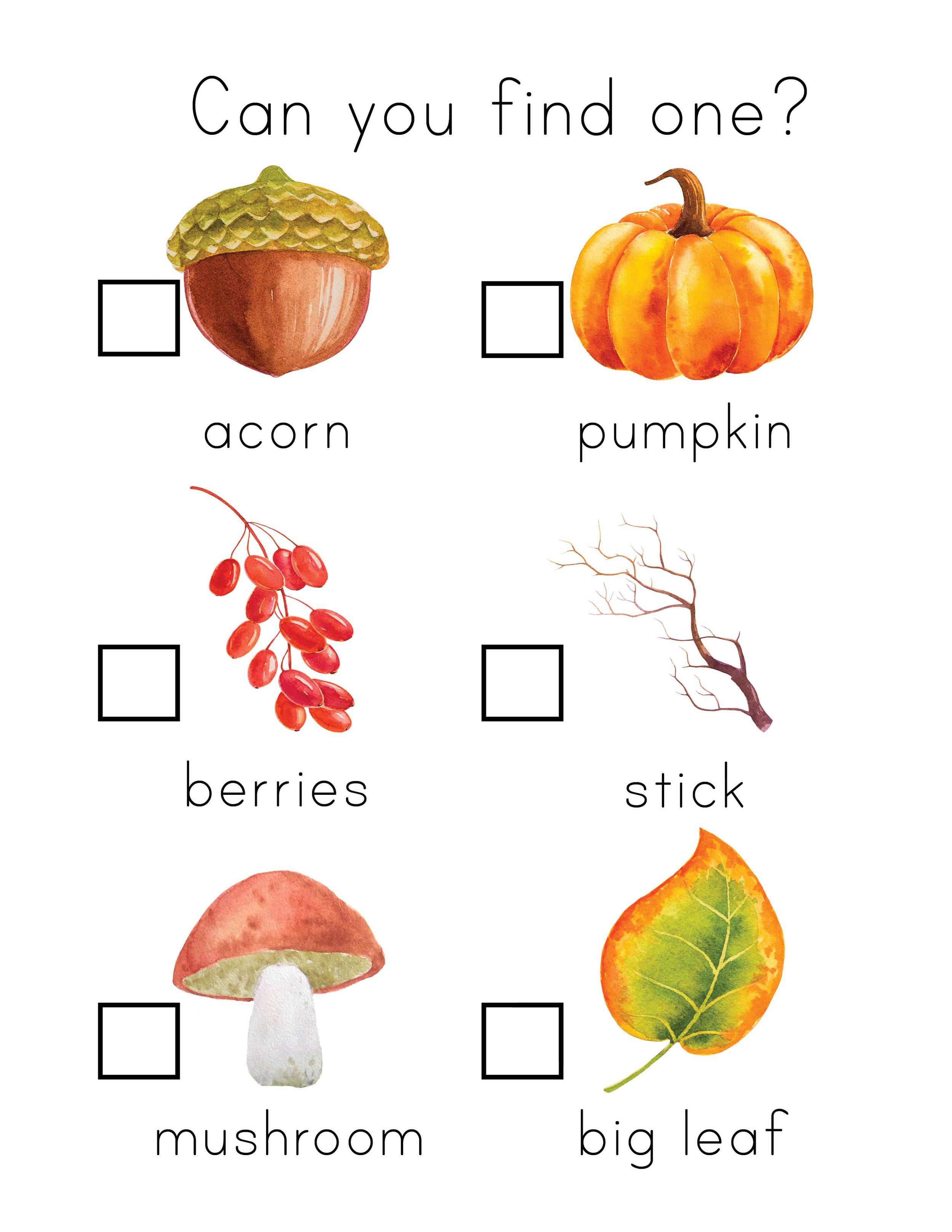 Fall + Thanksgiving Unit Study8.jpg