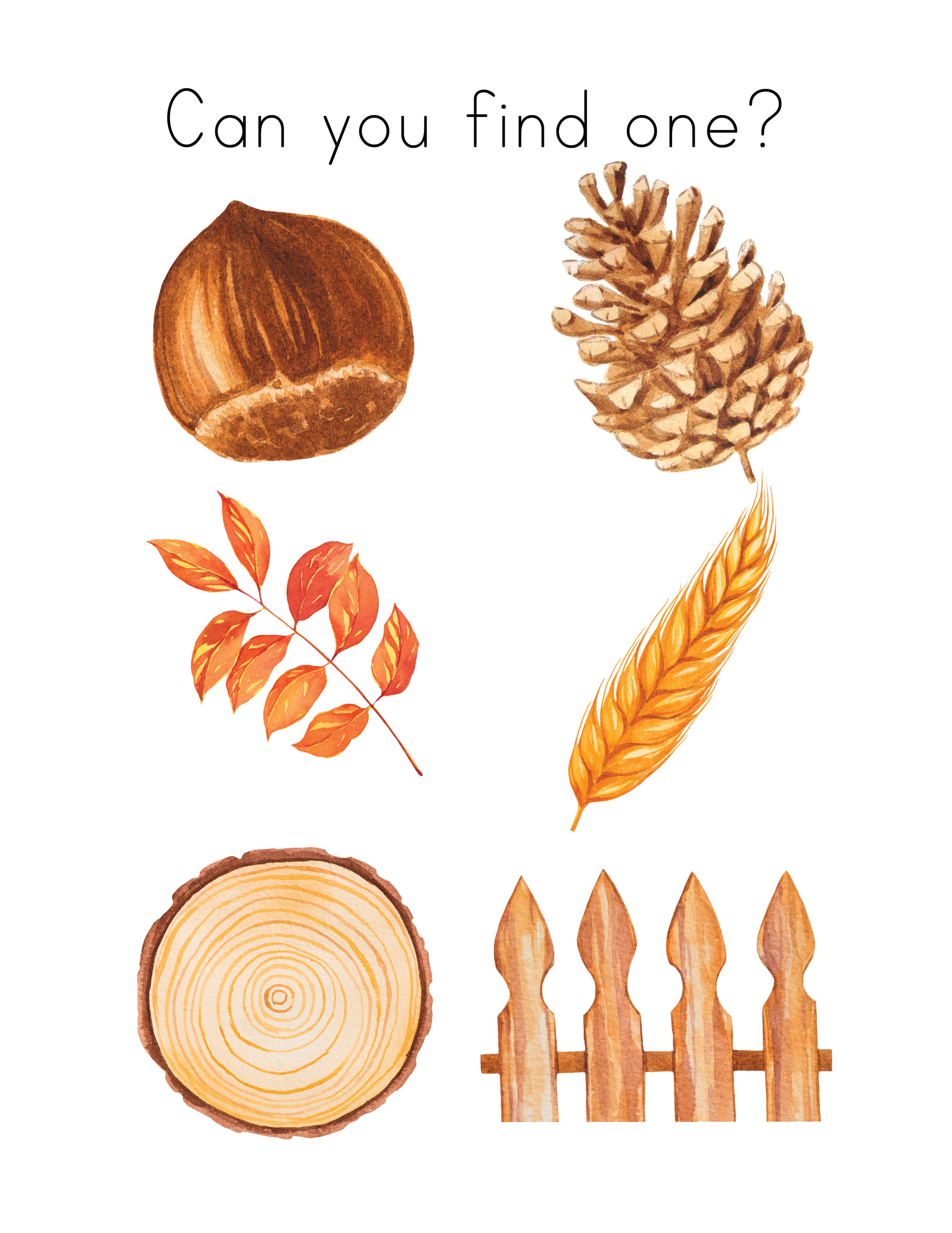 Fall + Thanksgiving Unit Study9.jpg
