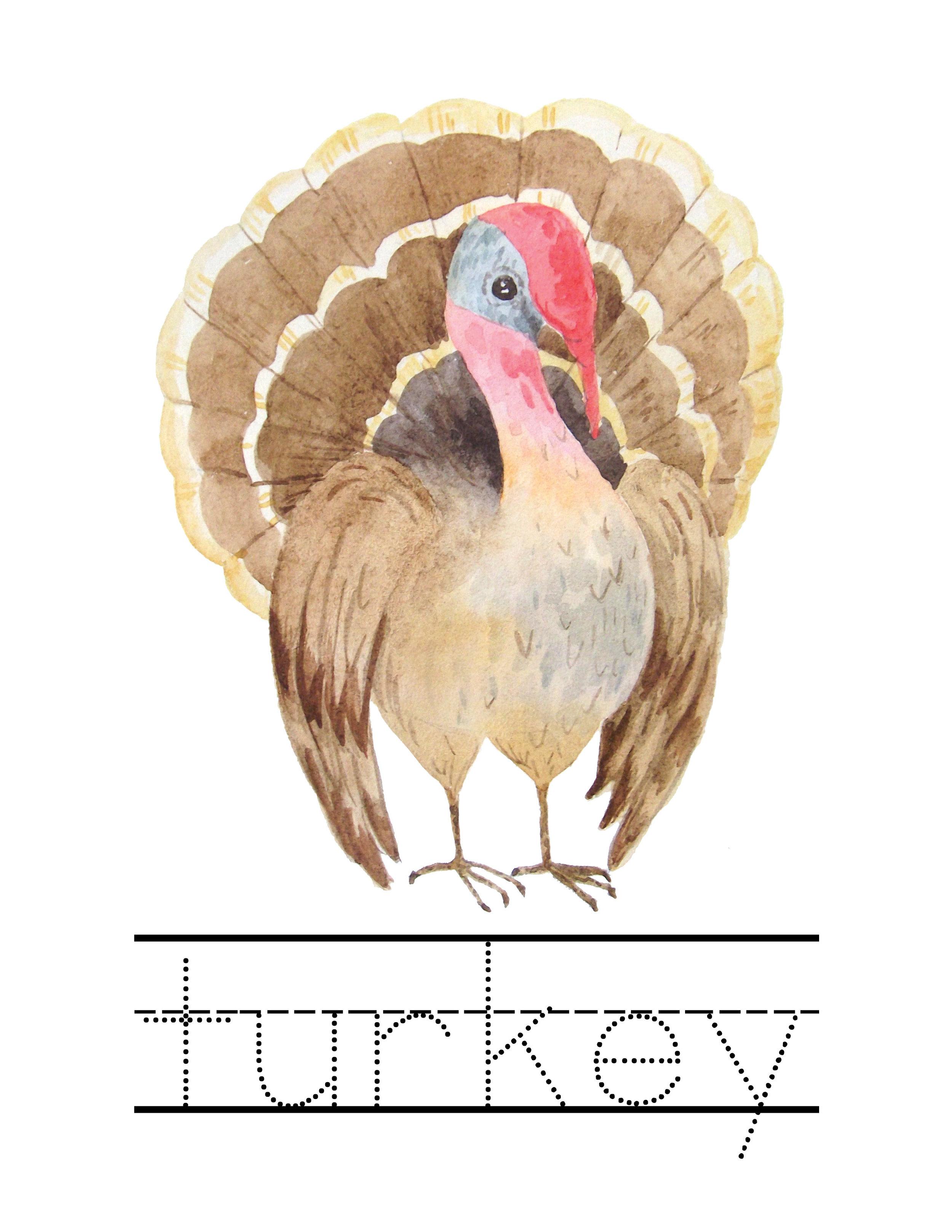 Fall + Thanksgiving Unit Study34.jpg