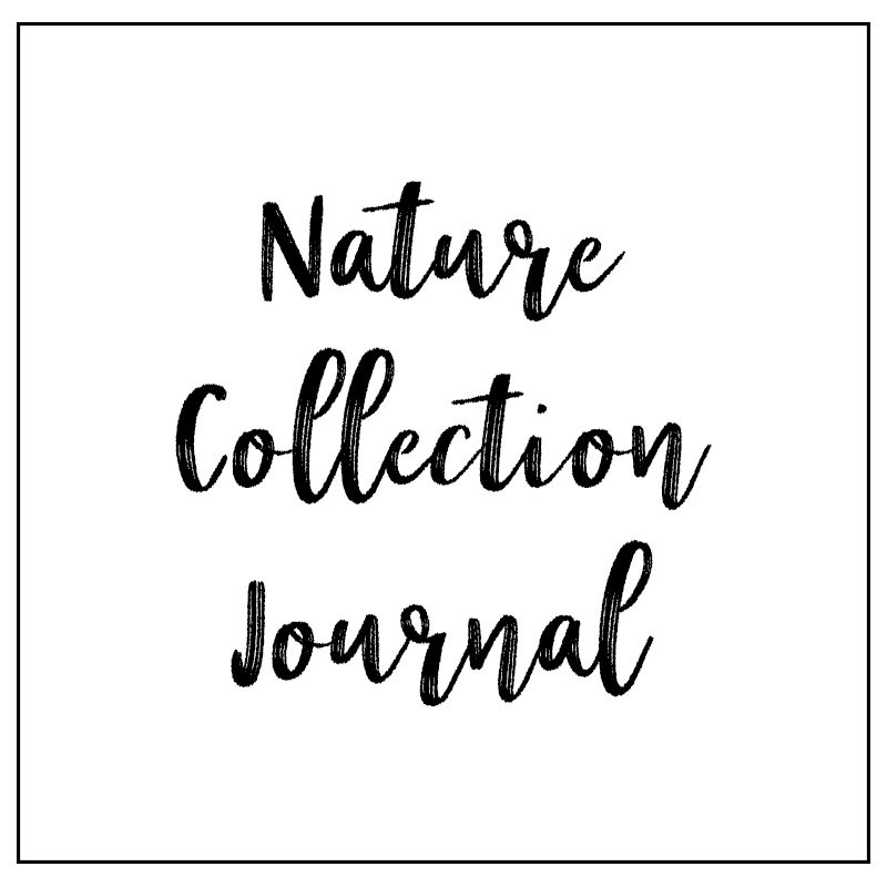 nature collection button.jpg