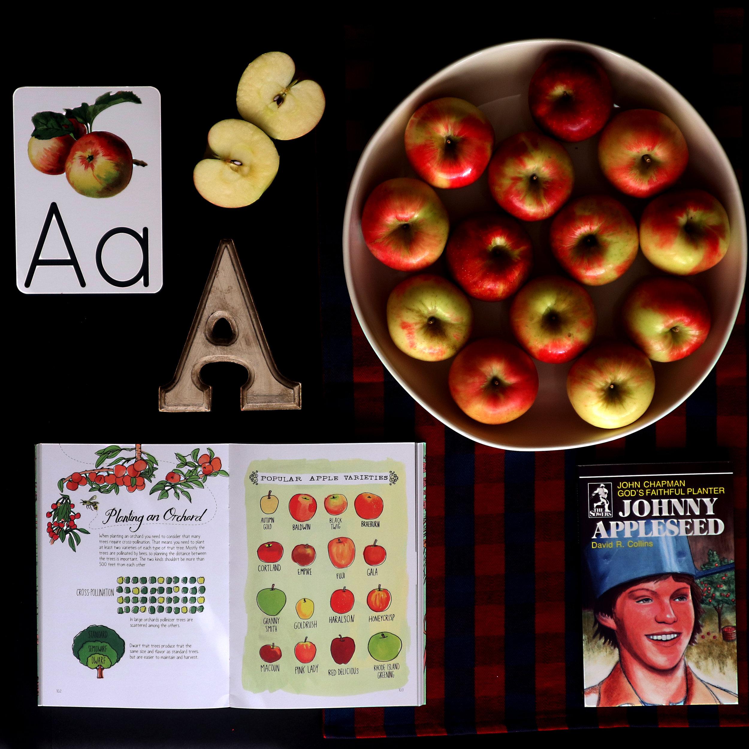 johnny appleseed flatlay.jpg