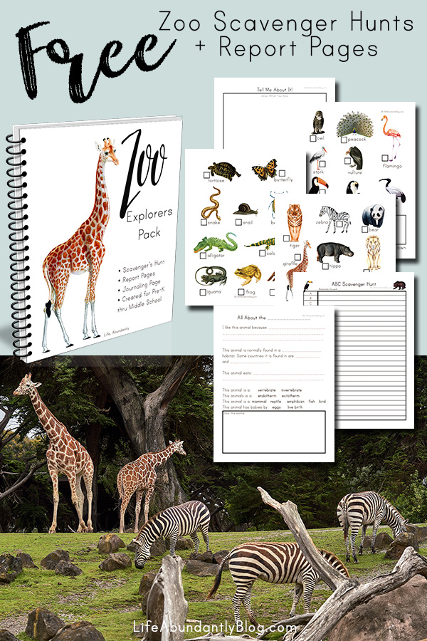 Looking for a way to add extra fun to a zoo day? These zoo scavenger hunt pages and middle school zoo report pages will bring it all together for you. And they're completely FREE printables!
