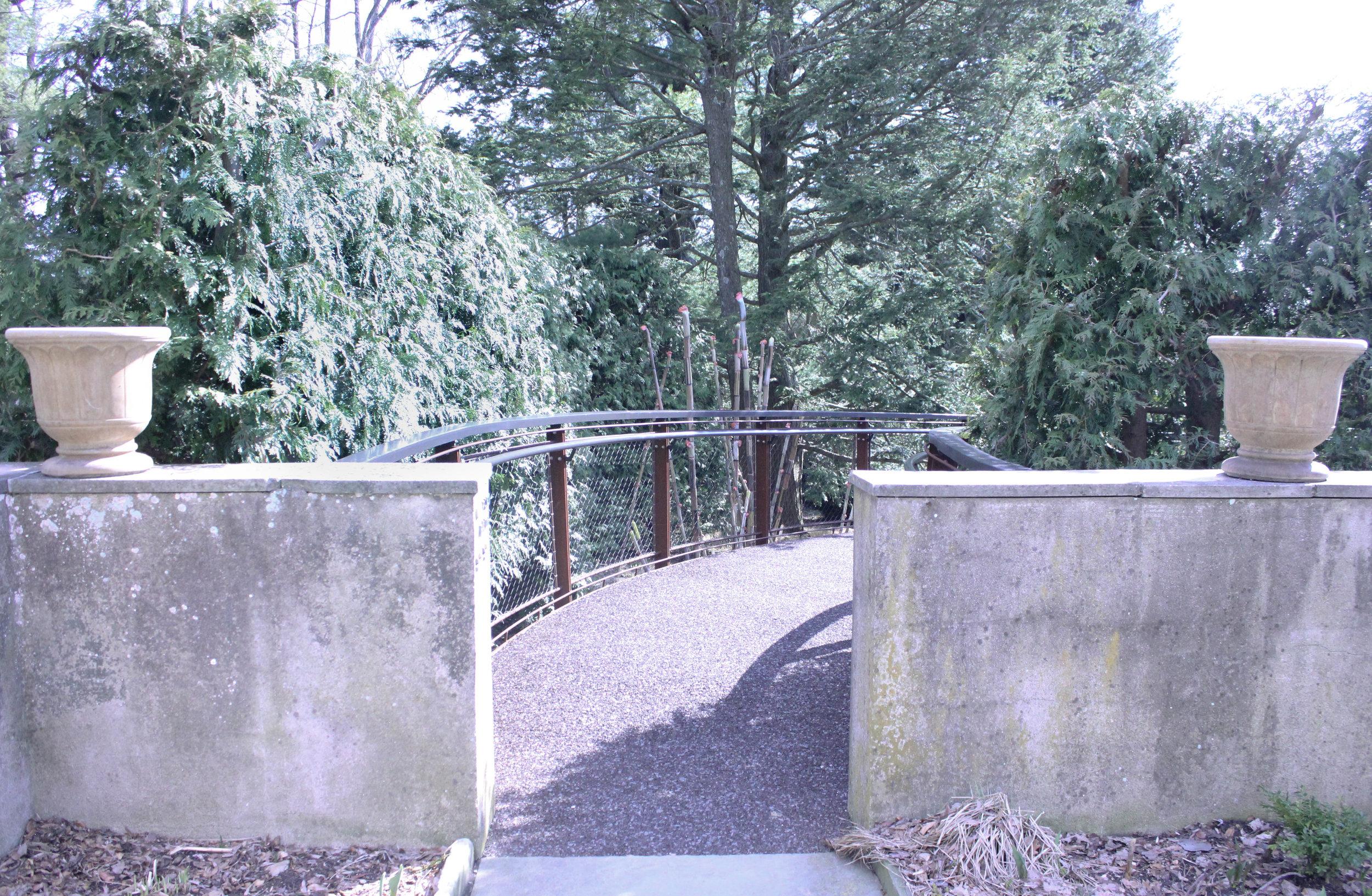 trail 2-0532.jpg