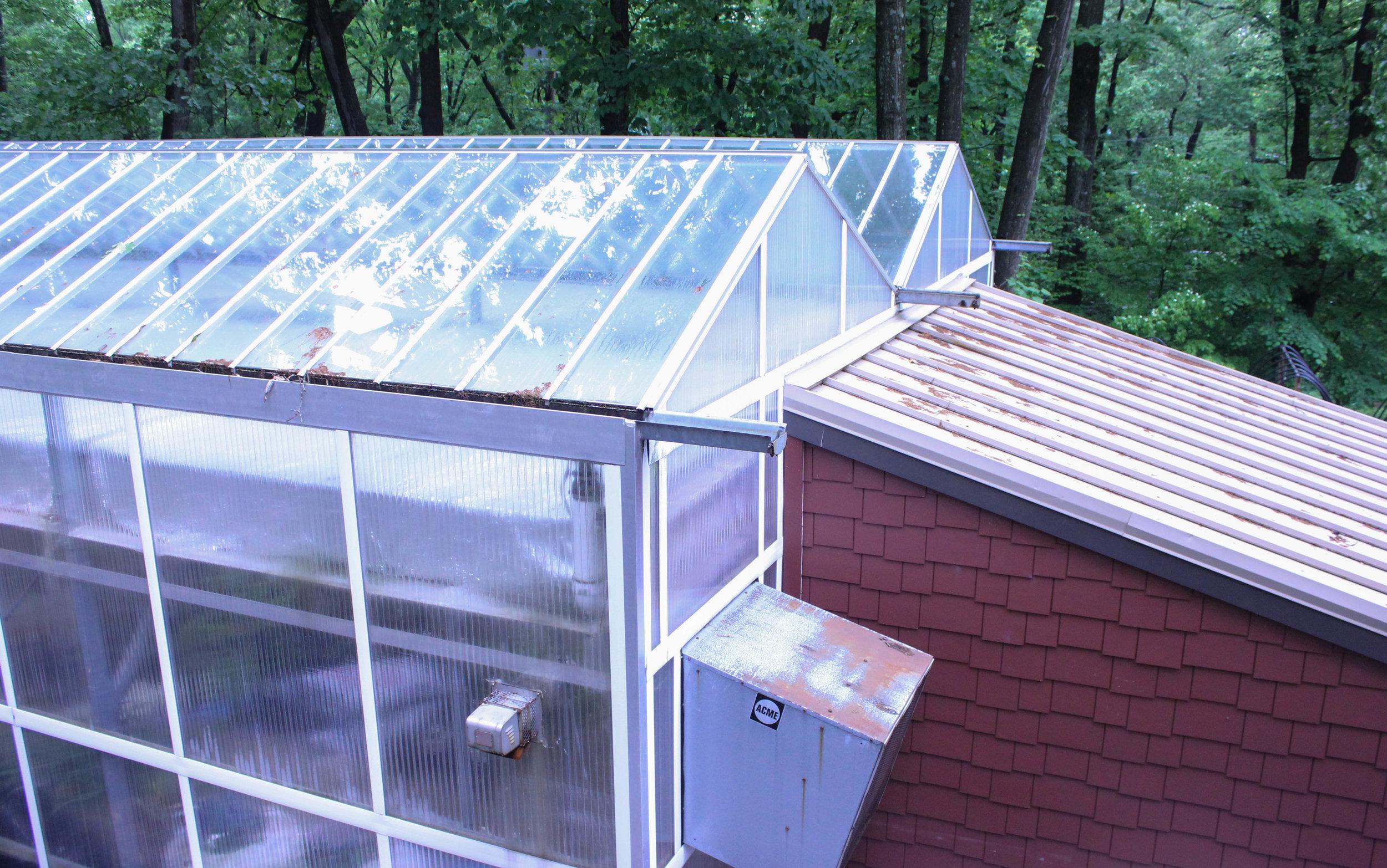 greenhouse-3504.jpg