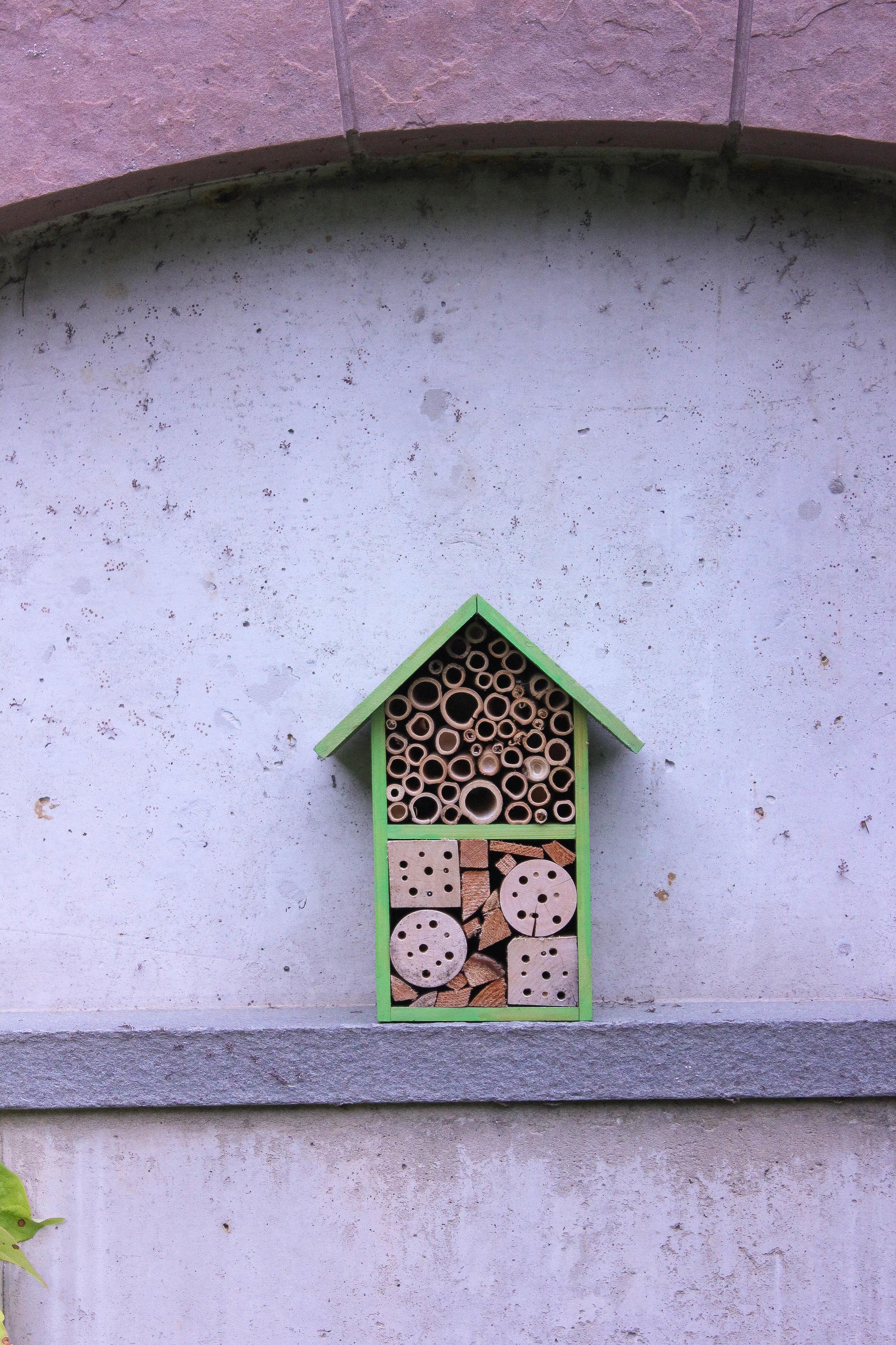 birdhouse-3781.jpg