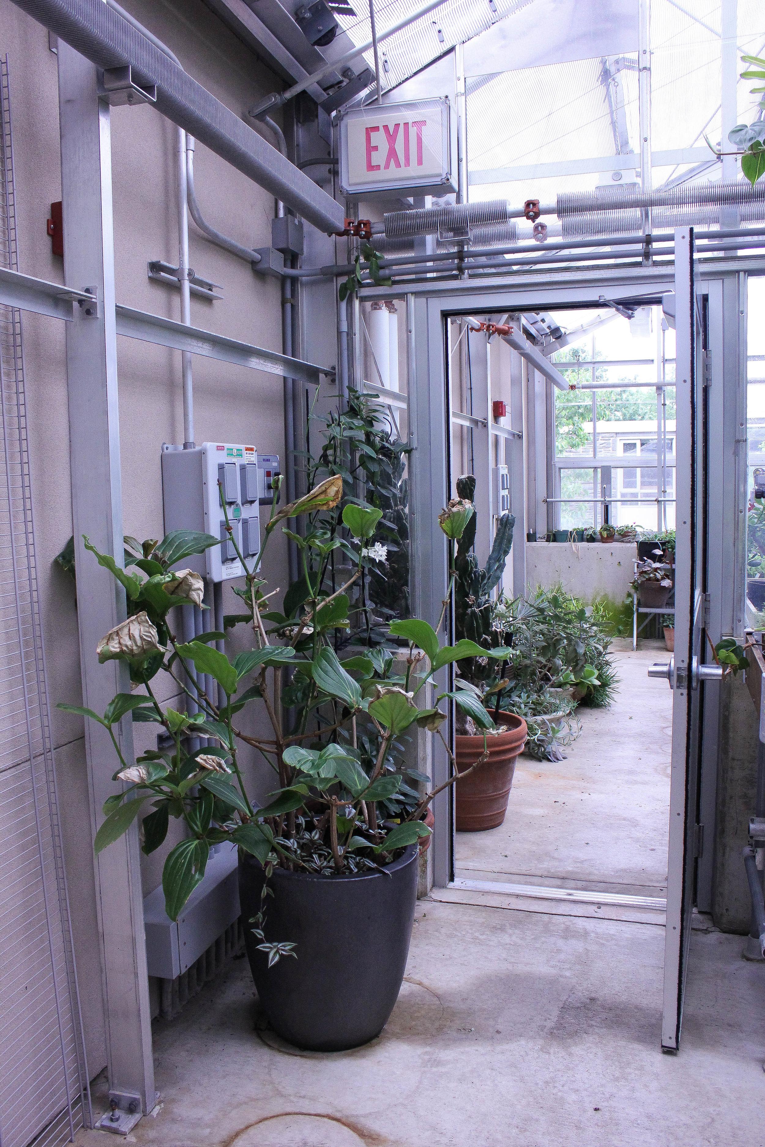 indoor-3867.jpg