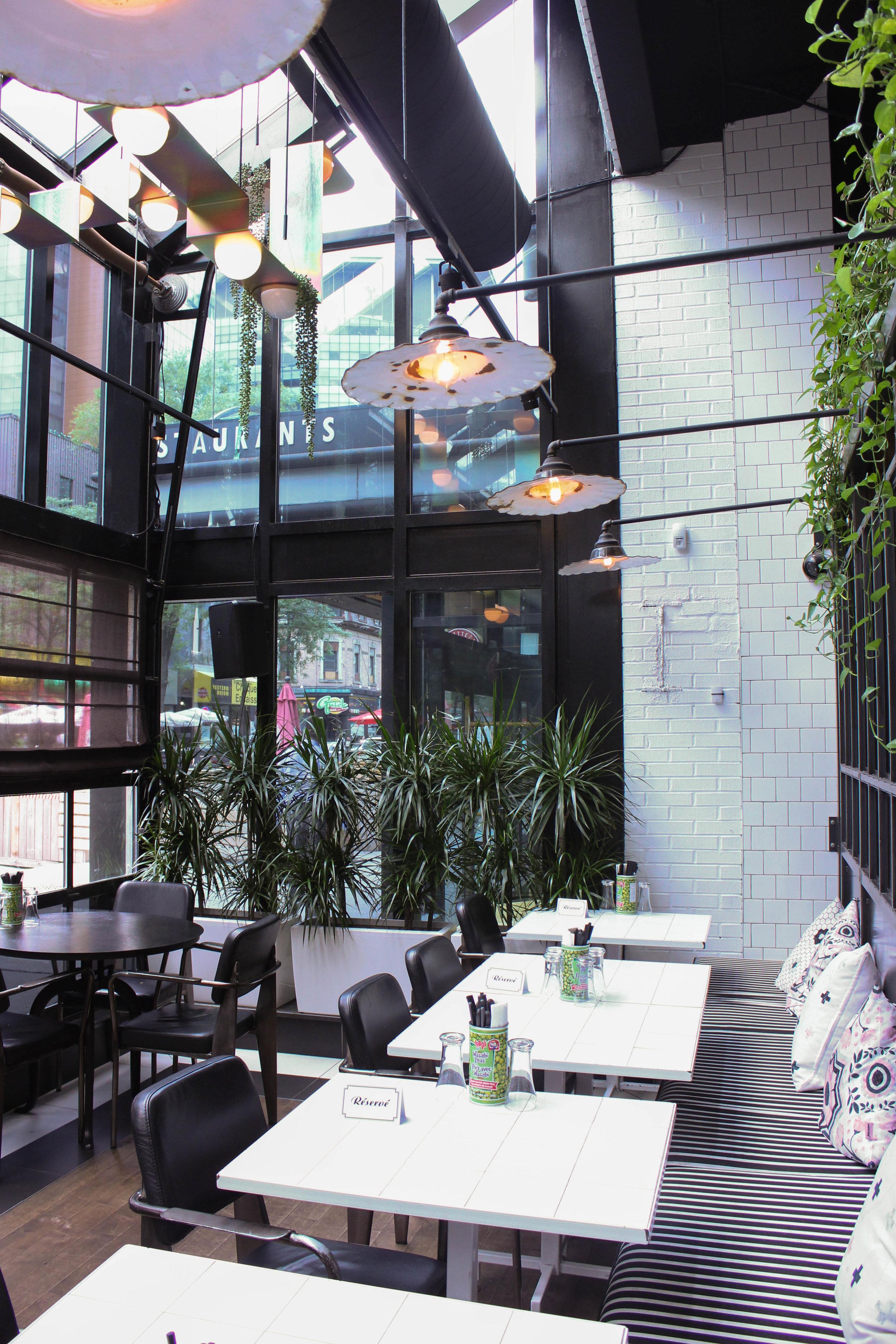 plants-in-restaurant-6157.jpg