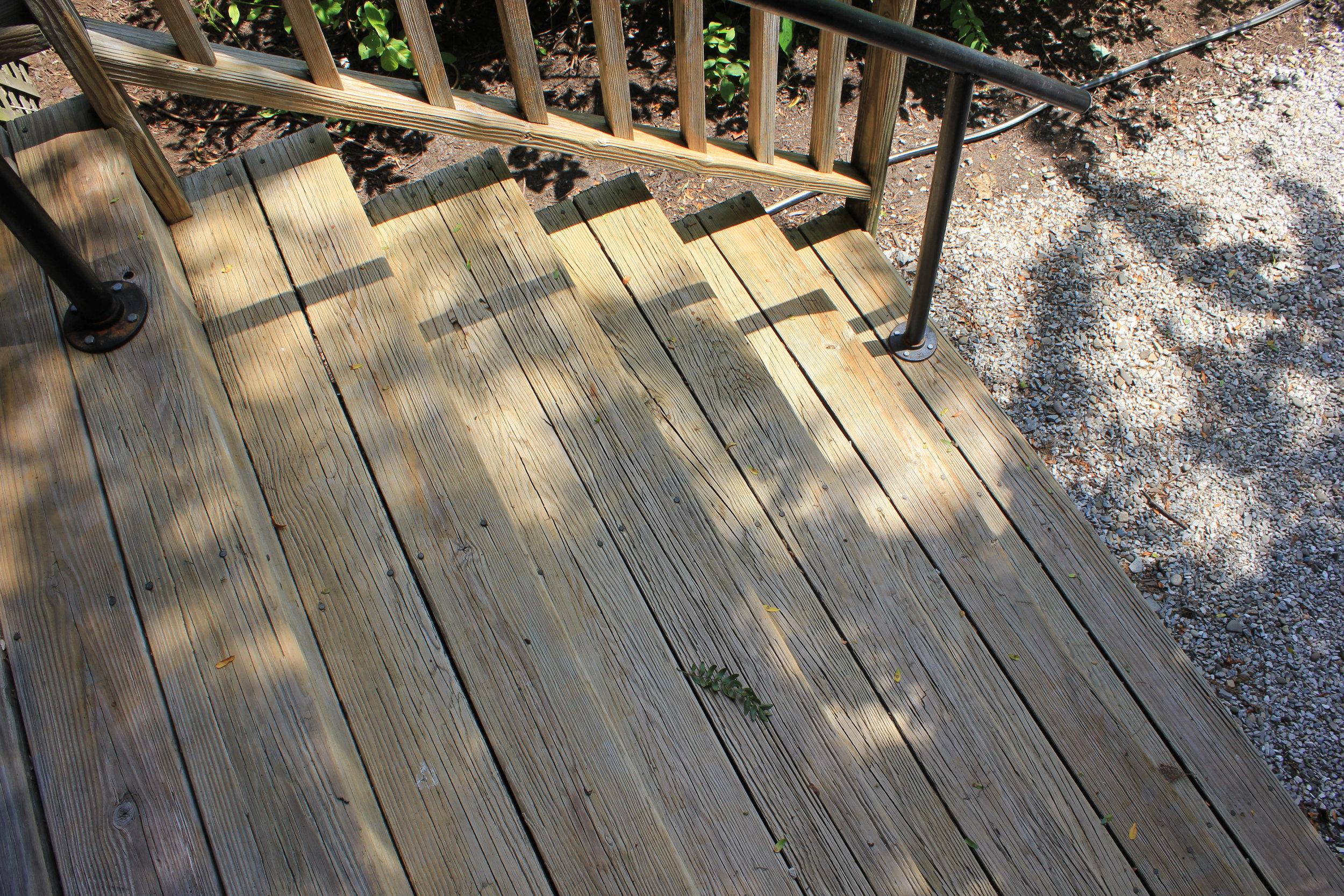 stairs-shadow-leaf-4785.jpg