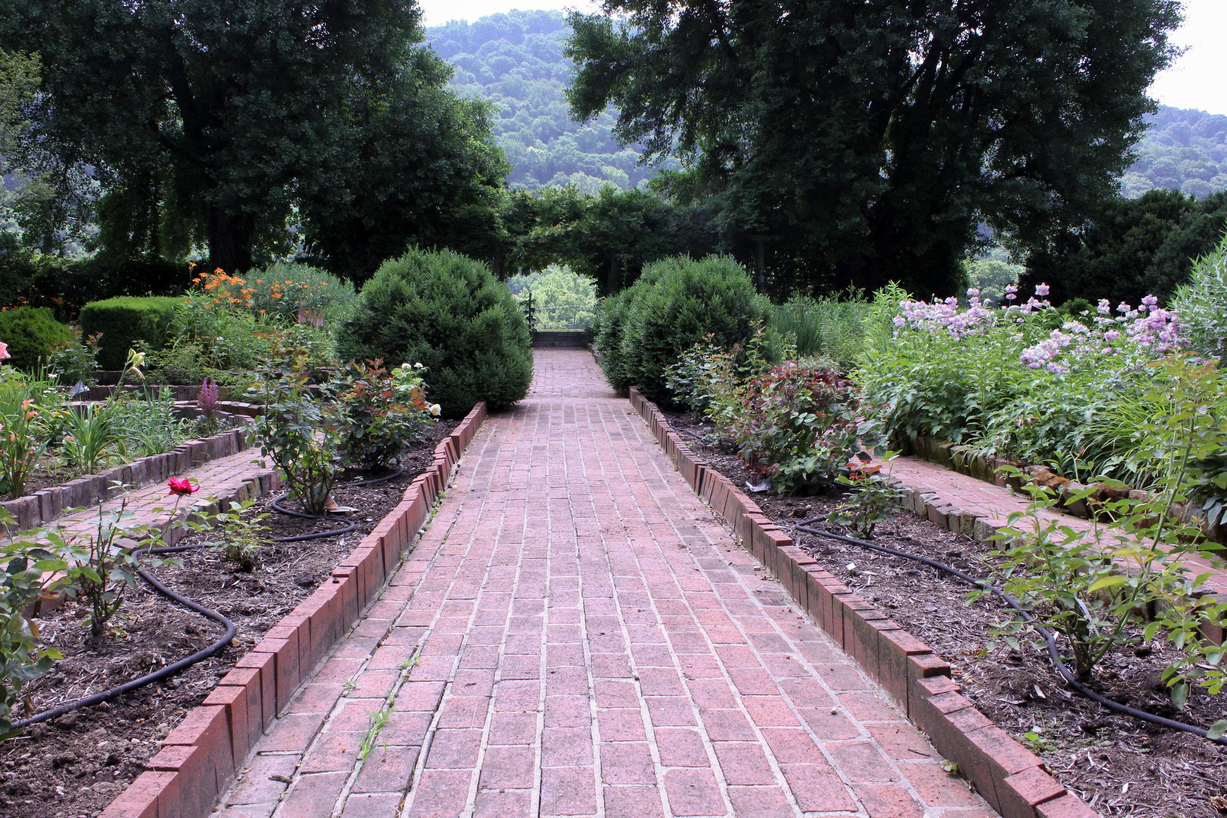 pathway-4527.jpg