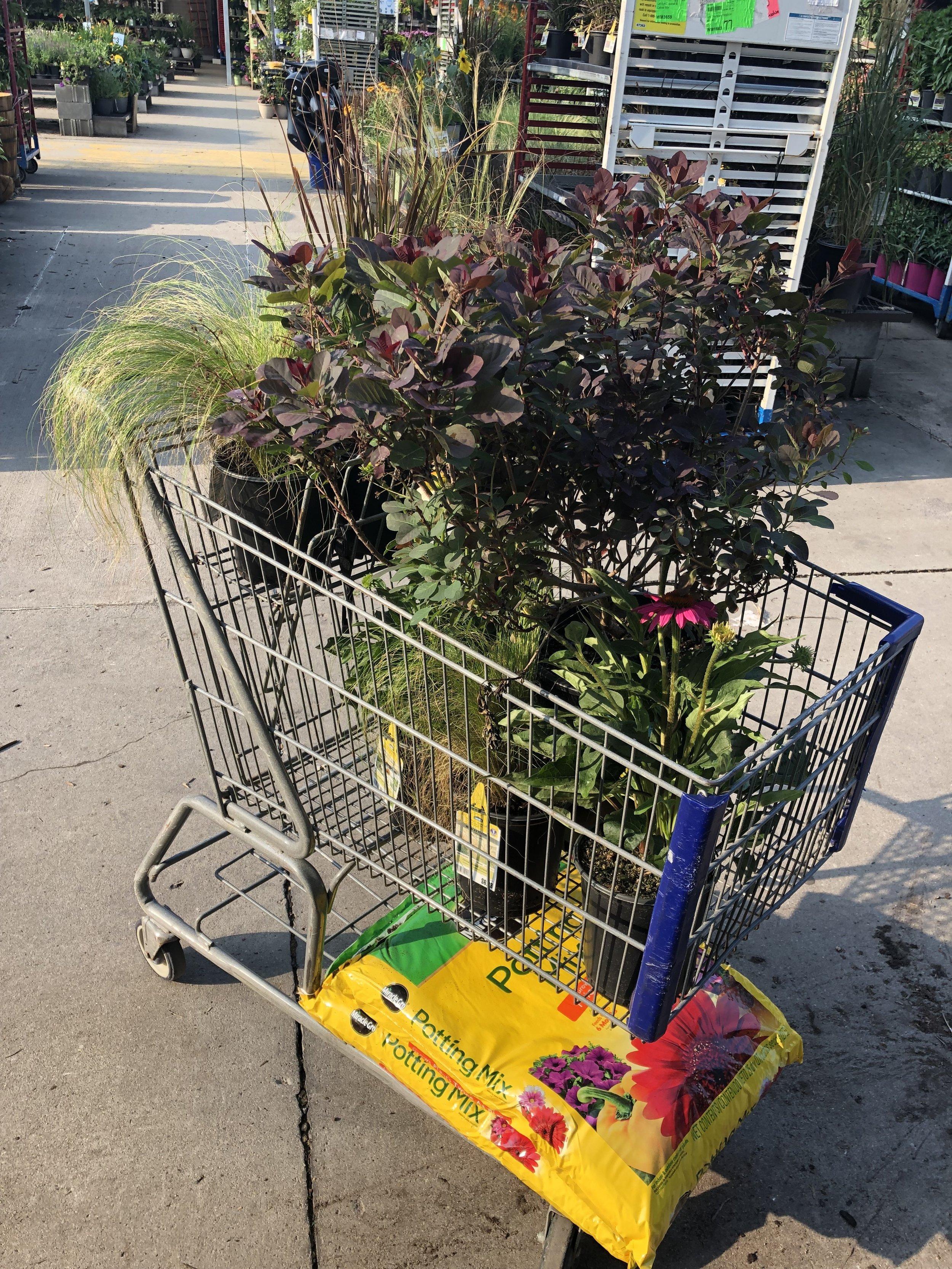 plant_shopping