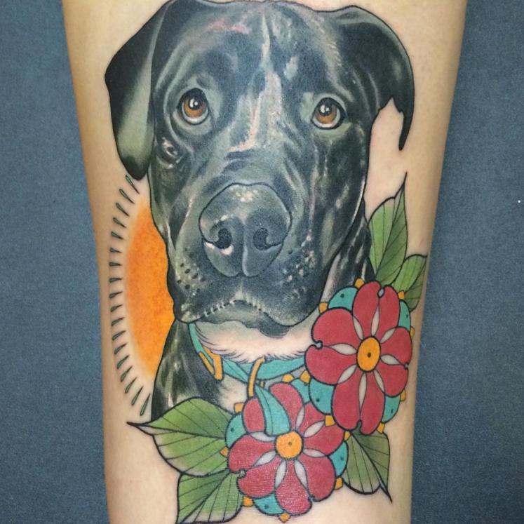 heidi_dog_portrait.jpg
