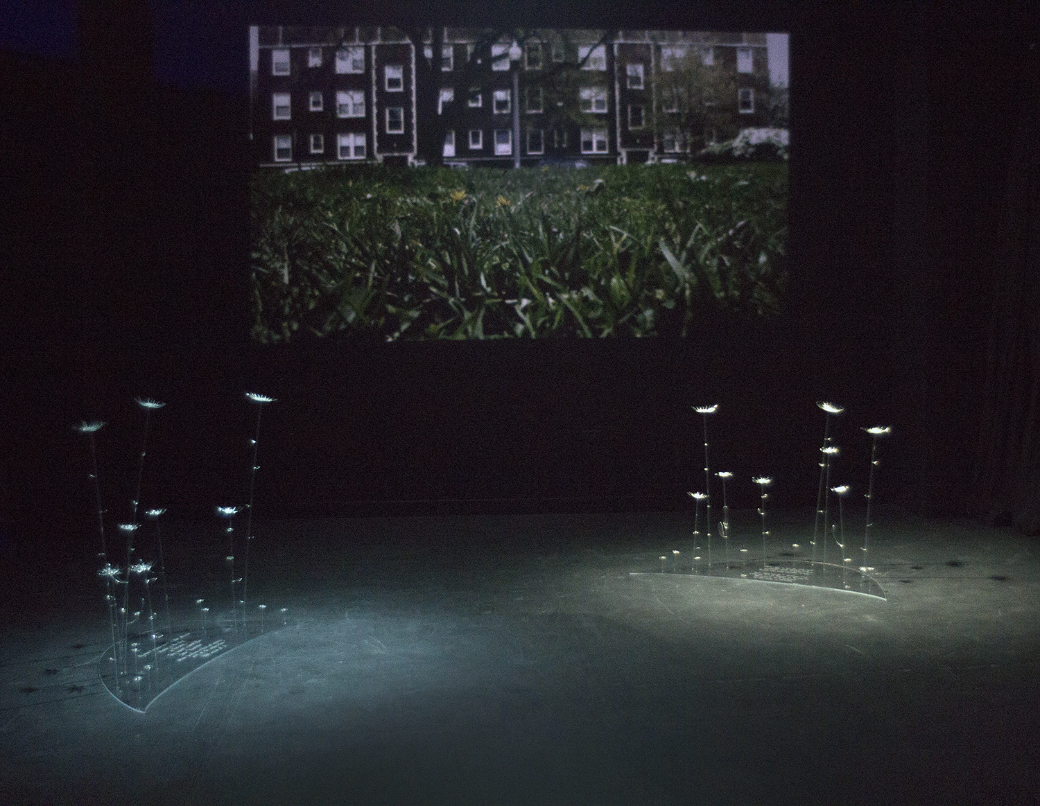 A view of one of the two rooms in the installation.