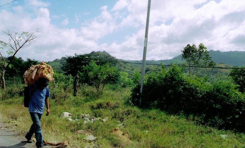 62- Worker on Road 12-9-05.jpg