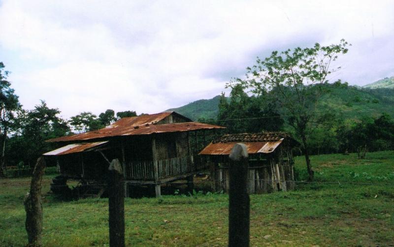 76-Stick House-Tin Roof 12-9-05.jpg